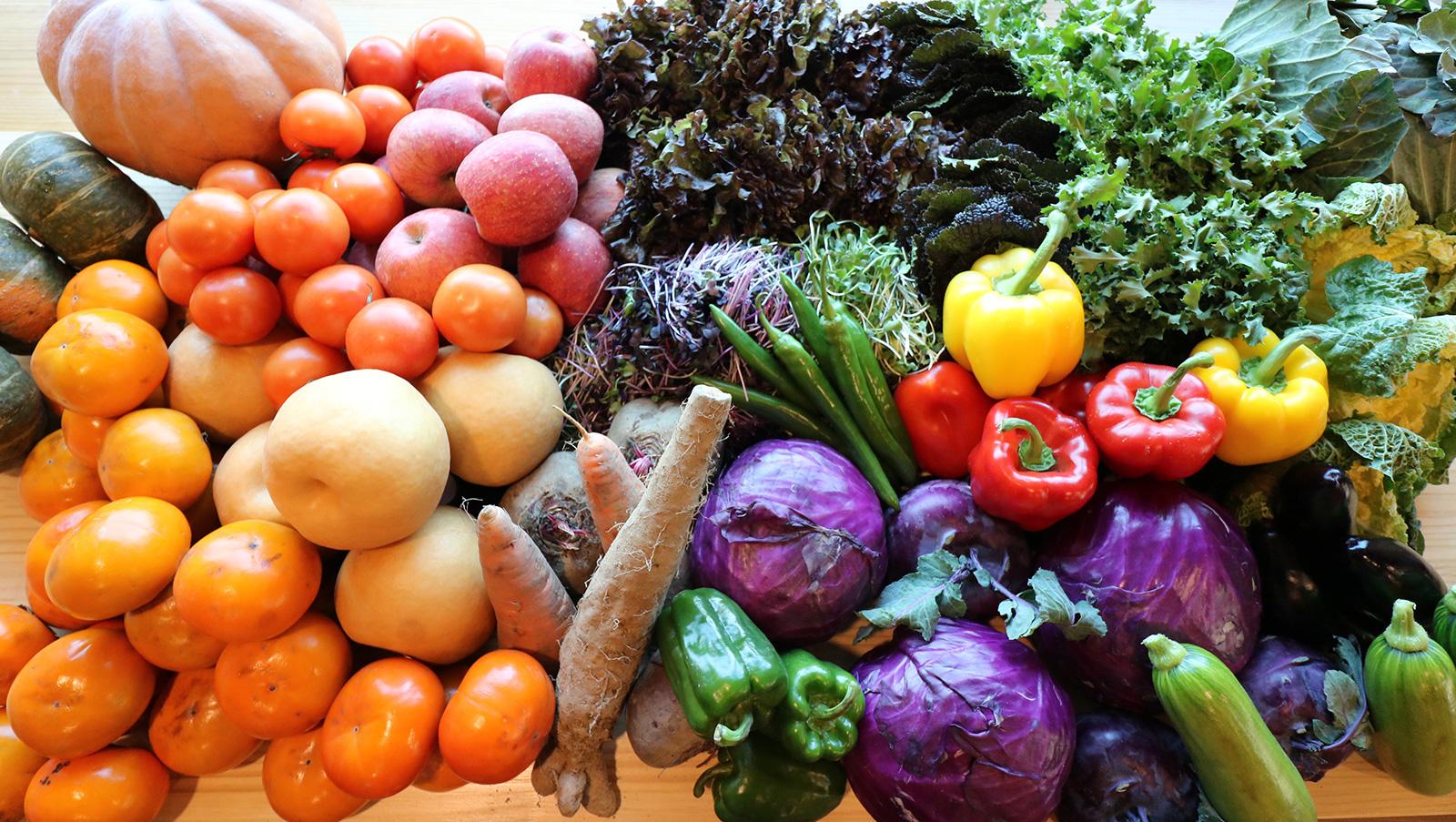 유기농채소